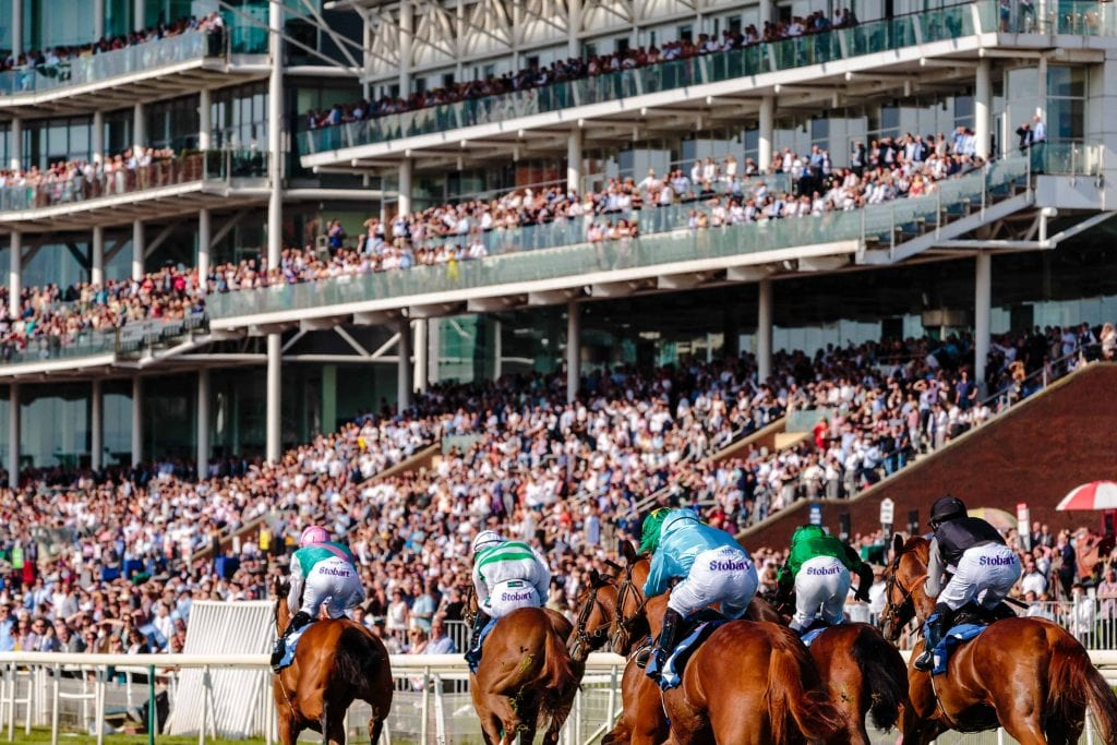 horse race with big audience and a couple of horses running